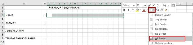 All Border Pada Excel