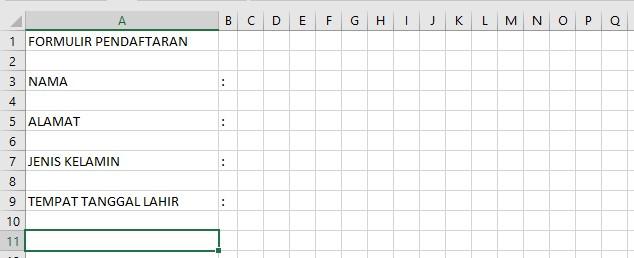 Formulir Pendaftaran di Excel