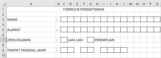 Hasil Membuat Formulir Pendaftaran di Excel