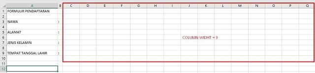 Langkah Membuat Formulir Pendaftaran di Excel