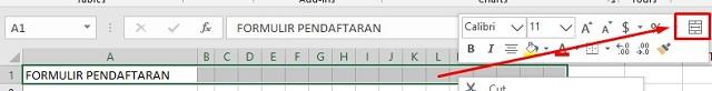 Memperindah Formulir Pendaftaran di Excel