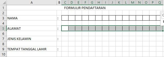 Trik Membuat Formulir Pendaftaran di Excel