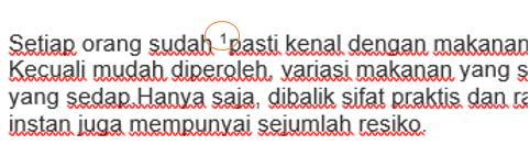 tampilan sesudah klik insert footnote