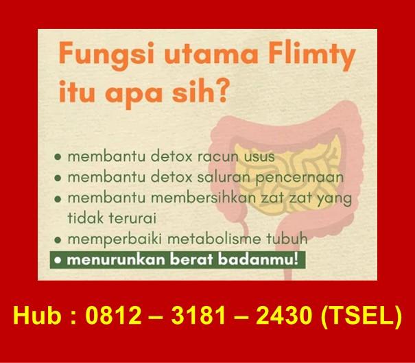 Fungsi Flimty